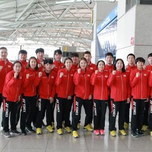 Again 2017, 한국 배드민턴 세계혼합단체선수권대회 출전